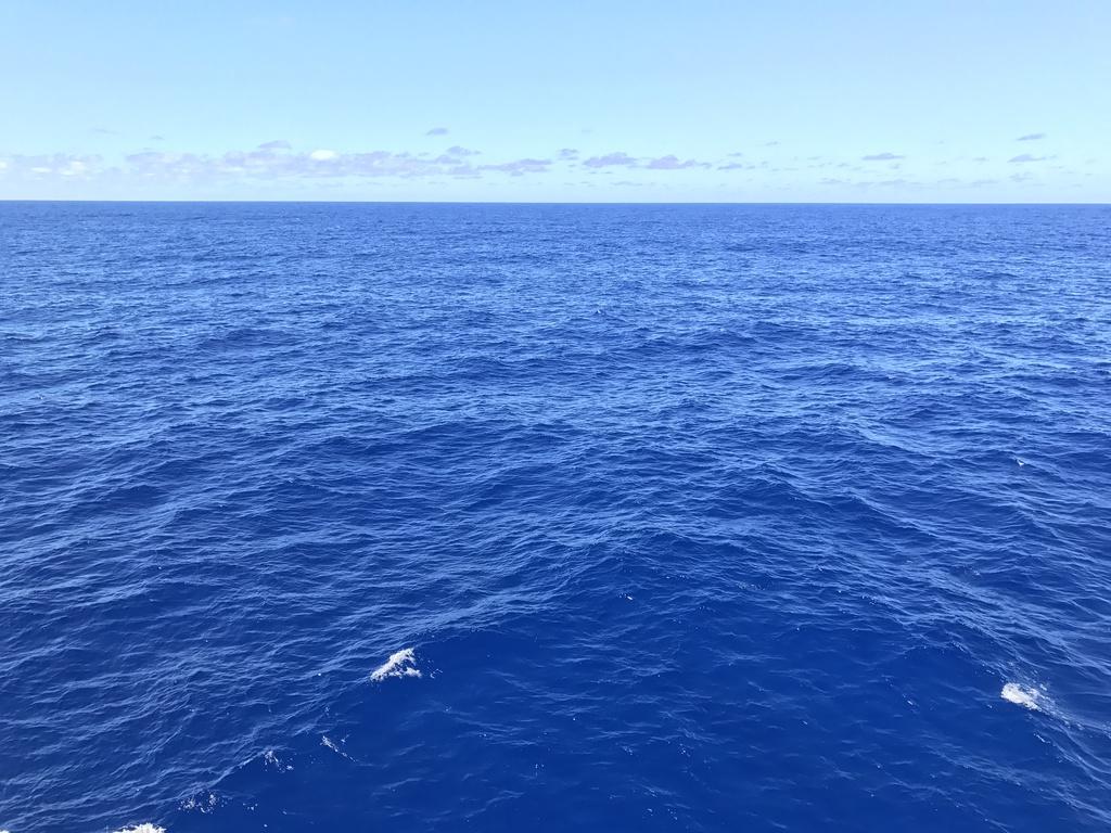 青すぎるほど青い海